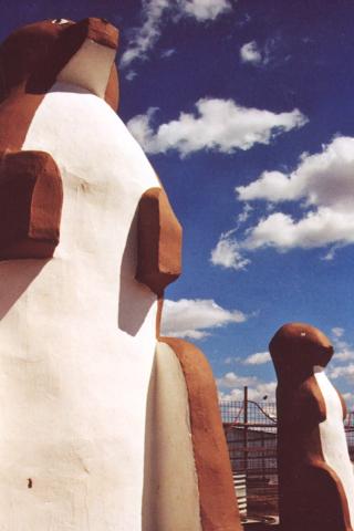 World S Largest Prairie Dog